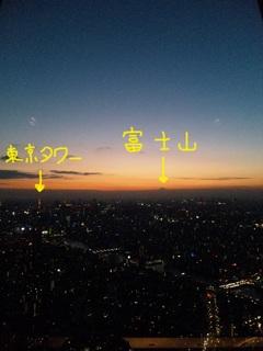東京タワー&富士山.JPG
