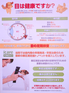 眼圧測定 (1)-1.jpg
